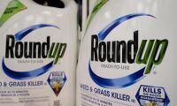 Bayer välkomnar lindrande glyfosatdom