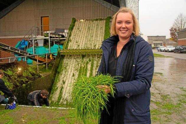 Lene Stødkilde-Jørgensen på Århus universitet har sökt nya forskningsmedel för att testa effekten av en högre andel gräsprotein i grisfodret.
