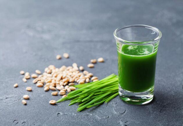 Spenat och vetegräs ger vackert illgrön färg på din shot.