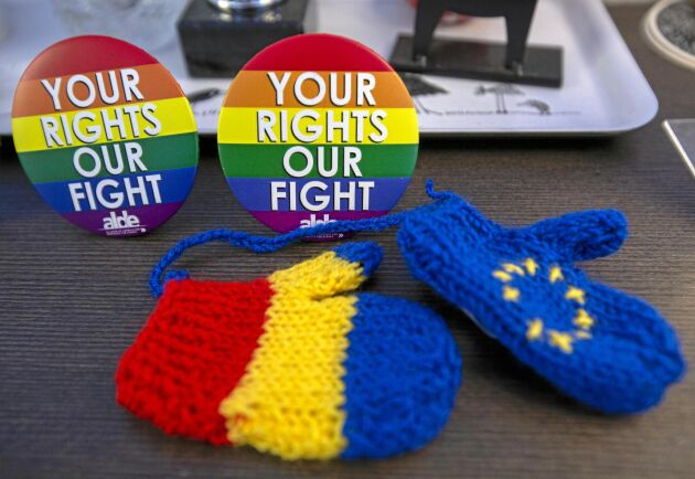 Knappar från partigruppskampanjer och en souvenir från det pågående rumänska rådsordförandeskapet pryder Brysselkontoret.