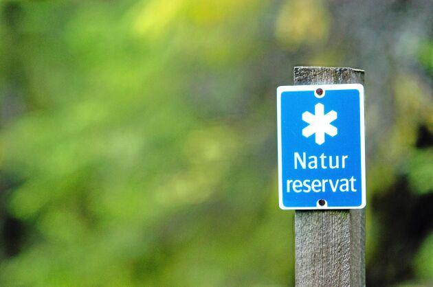 Riksrevisionen ska granska de statliga insatserna för långsiktigt skydd av skog.