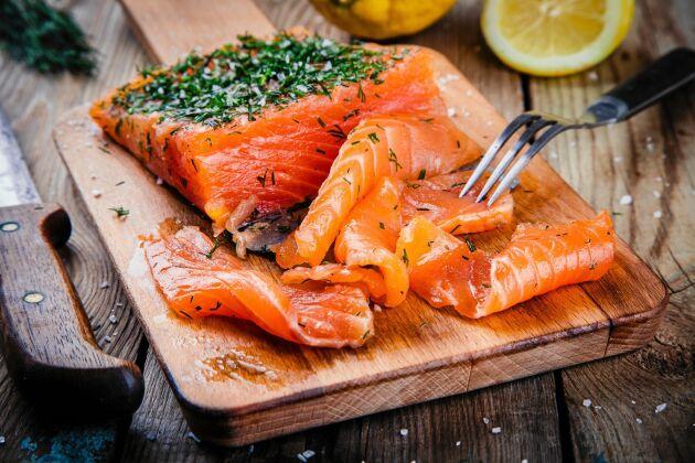 Gravad lax är en delikatess som kräver omsorg vad gäller tillagning och förvaring.