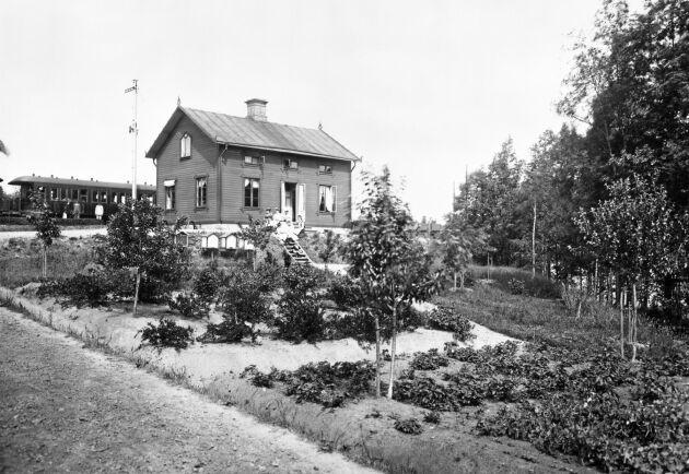 Stinsen Gustaf Johansson vid Bägviken station hade en trädgård med fruktträd, bärbuskar och odlingar. Dessutom bikupor på rad. Bilden togs 1900.