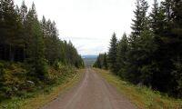 Fullständigt orimligt om intrångsersättning inte gäller fjällnära skog