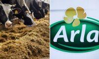 """Arlas VD: """"Väntar oss ett högre mjölkpris snart"""""""