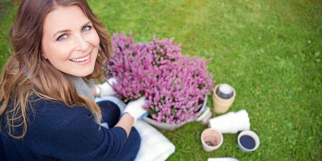 Så lyckas du med höstkrukan–12 växter som tål en frostknäpp