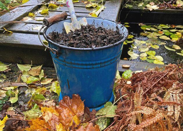 Bättre jord med hemgjord lövmull