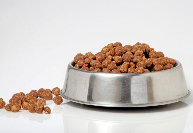 Nederländska veterinärer slår larm om importerat rått kött som ingår i hundfoder.