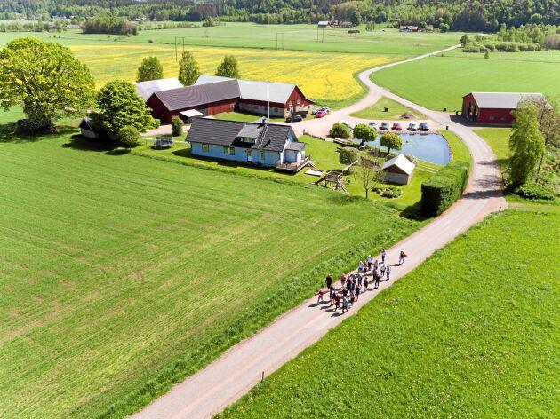 Drönarbild på Hakestad i den halländska mellanbygden, där skogen möter slätten. Här finns flera småskaliga livsmedelsproducenter.