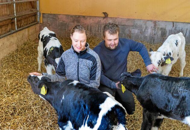Johanna och Arvid gosar med några av gårdens kalvar.