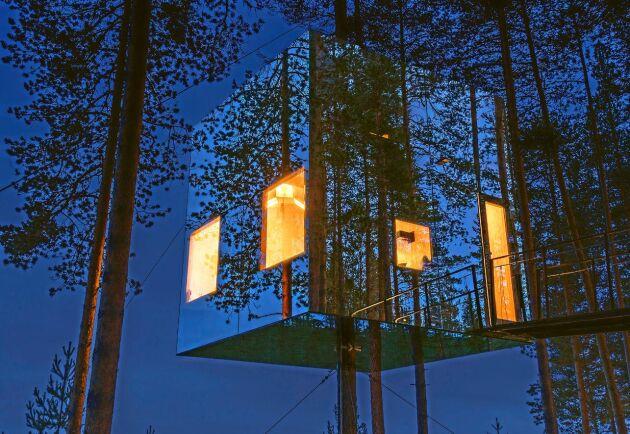 Ett av Treehotels hotellrum har spegelväggar som reflekterar skogen.