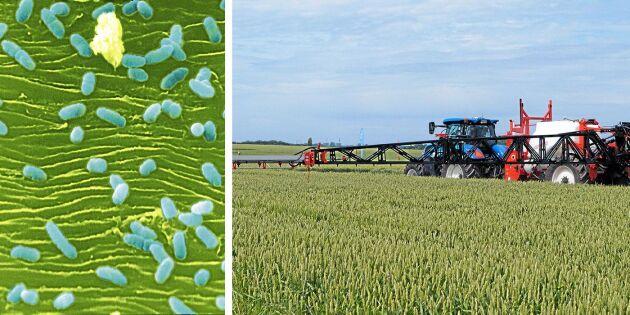 Byter kemiskt skydd mot biologiskt
