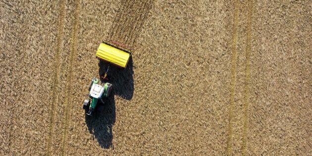 Utbilda agronomer efter marknadens behov