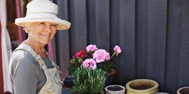 Äldre ska må bättre med hjälp av odling