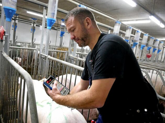 För att hålla koll på suggornas hull använder han en scanner.