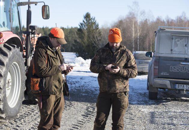 Hundförarna Bo Nilsson och Markus Berg synkroniserar hundarnas pejlar.