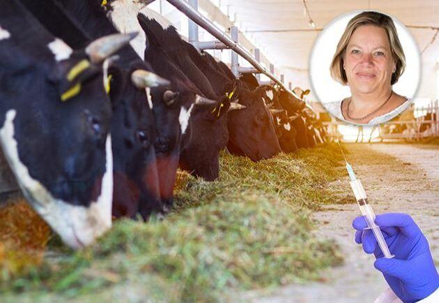 Svenska bönder är världsledande i kampen mot antibiotikaresistens och borde få ett erkännande för det, tycker Lena Johansson.