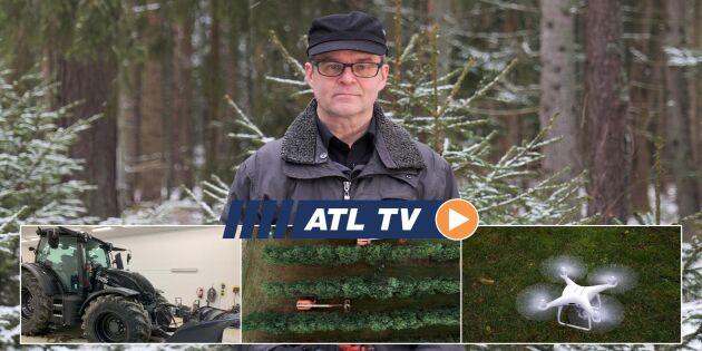 ATL TV: Här plockas tredje generationens kottar
