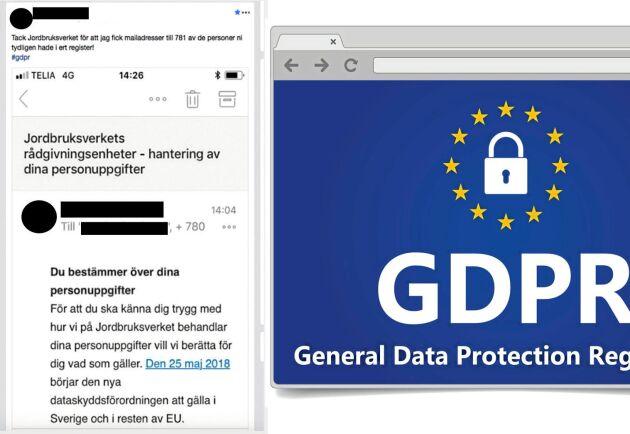 I informationsmejlet fanns 781 stycken andra mejladresser bifogade.