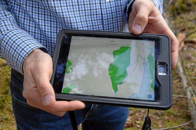 En gul pixel på kartmaterialet visar var det finns granbarkborreskador.