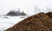 Hållbara produkter av renat skogsavfall