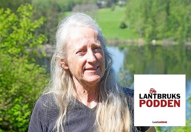 Helena Ekholm, ordförande i Björkvretens egendom, en skogsfastighet på 500 hektar.