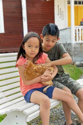 Majlis, 7 år, och Gusten, 10 år, gillar att gosa med sin höna Stella.