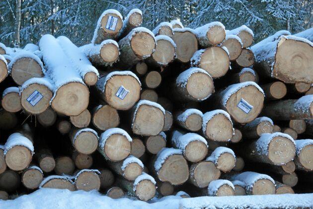 Det råder ingen större oro över gränshandeln, enligt skogsbolagen.