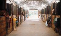 Miljardkostnader för ombyggnad av stallar