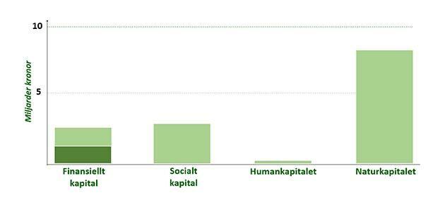 Diagrammet visar Sveaskogs värde i miljarder kronor. Enligt den nya beräkningsmodellen har naturkapitalet som skogen representerar ett stort ekonomiskt värde.