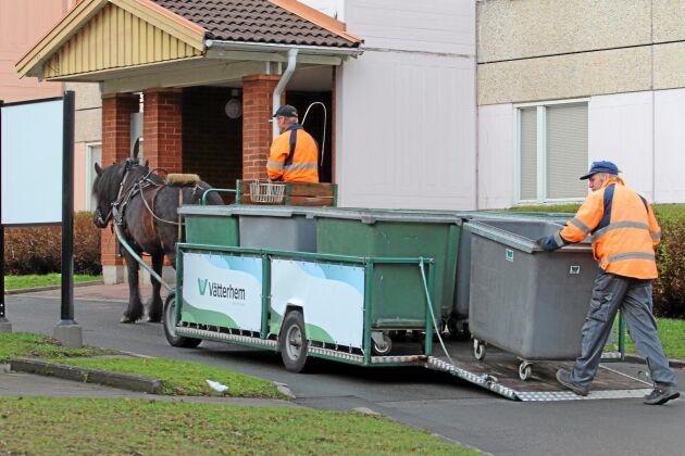 Hästen Salsa drar den specialbyggda vagnen runt Råslätt.