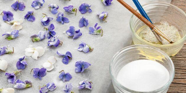 Så kanderar du blommor – vacker dekoration till tårtor och bakverk