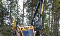 El-Forest klarade hårt test