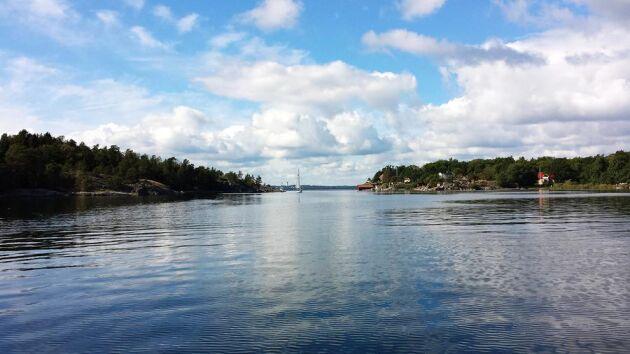 Enligt forskare vid Lunds universitet har rådgivningsprogrammet Greppa näringen lett till minskat kväveläckage i Östersjön.