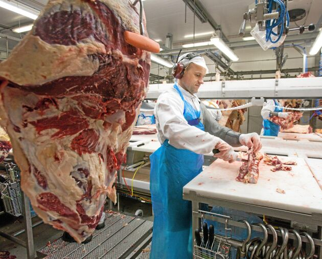 Redan nu styckas en hel del nöt i Skövde men i framtiden kan även grisstyckningen hamna på slakteriet.