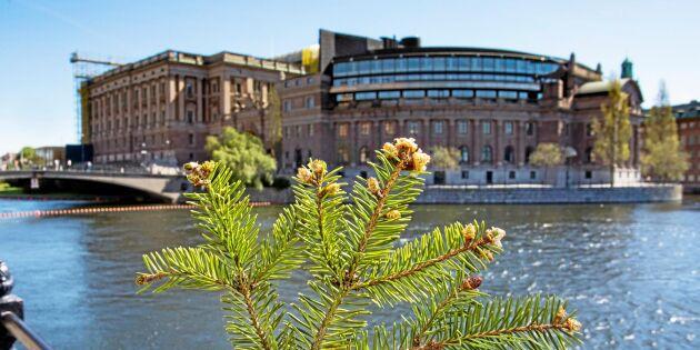 Skogsindustrin välkomnar nya regeringen
