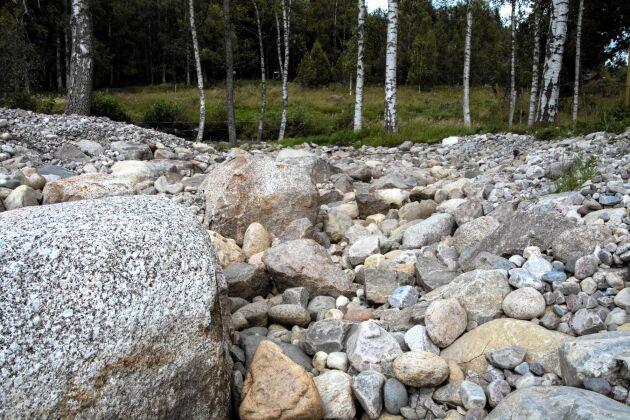 Under den torra sommaren 2018 upphörde vattenflödet i Hammarskogsån. Länsstyrelsen Örebro hade i slutet av 2017 tagit bort dammluckan och regleringsmöjligheterna.