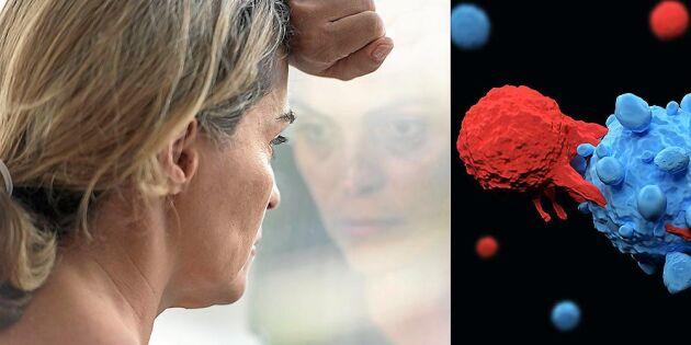 Ny forskning ger hopp: Här är cellen som kan ta död på all cancer