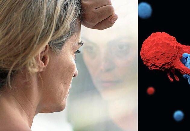 Forskare har upptäckt en cell som kan angripa och förstöra all sorts cancer.