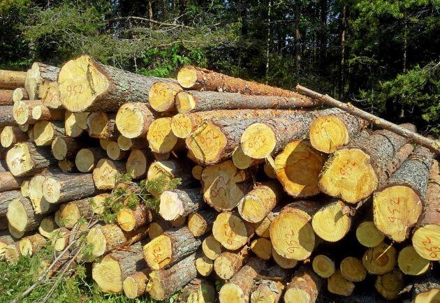 En nytillsatt utredning ska titta på hur äganderätten i skogen kan stärkas, samtidigt som mål om biologisk mångfald uppnås.