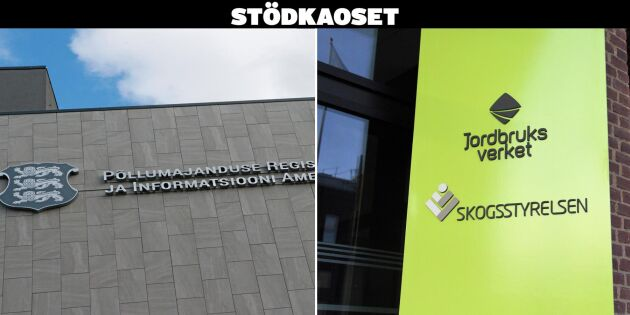 Grafik: Så ser stödet ut i Sverige och övriga EU
