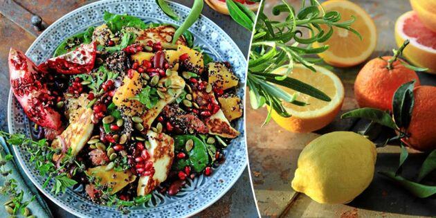 Matig citrussallad med halloumi och rostad pumpa – fantastiskt recept!