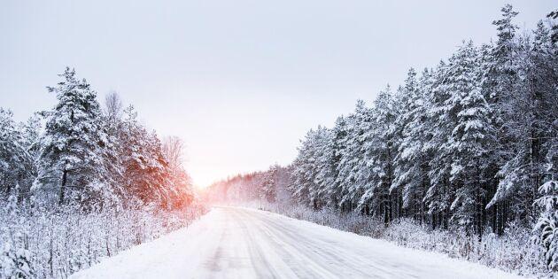 Vinterhalka - en mardröm som har många förklaringar