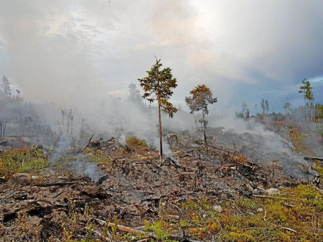 Efter många av de stora bränderna under tidigare år har branden klivit upp igen efter att räddningstjänstens insats har avslutats.