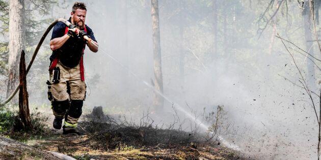 Kraftig ökning av anlagda skogsbränder