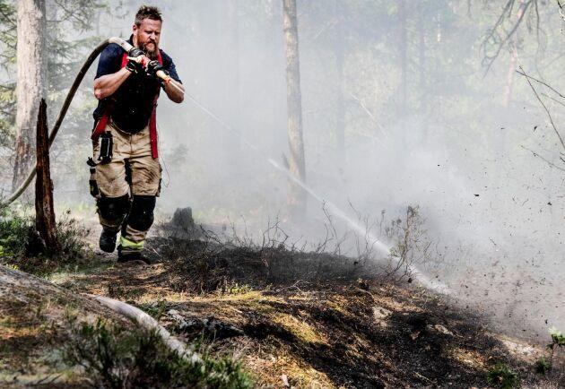 Under maj månad var det många anlagda aspluddbränder i landet. Arkivbild.