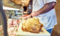 Tarmbakterier hos fjäderfän skapar EU-oro