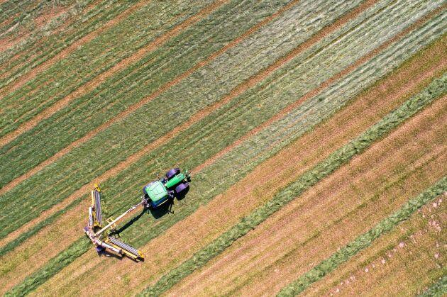 Vallen är gynnsam att ha med i växtföljden, skriver debattörerna.
