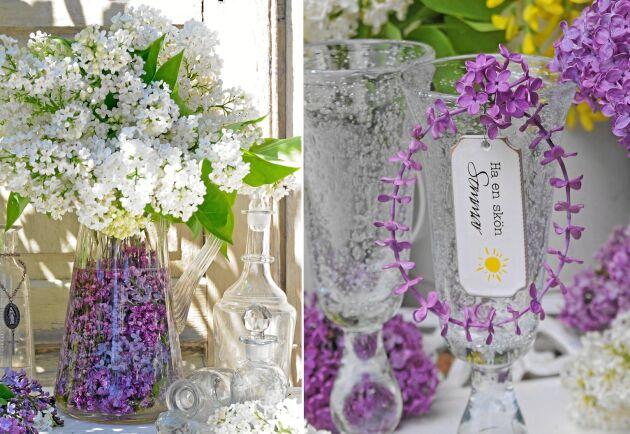 Syrener i stort och smått. Pynta både med enstaka blommor och hela kvistar.
