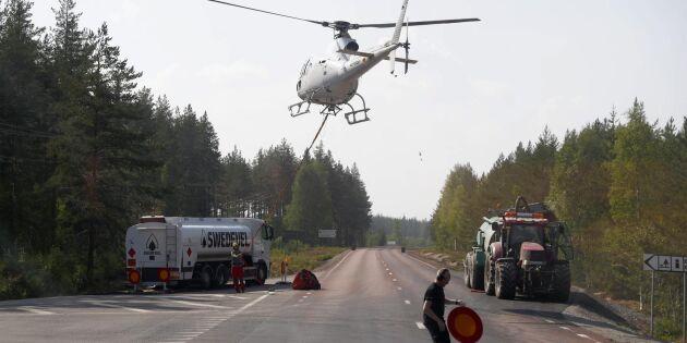 Skogsbränderna: Tillfälligt stopp för skogsförsäkringar